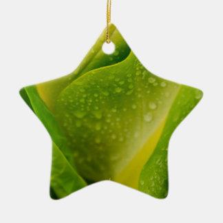 Flora Dominica 3 Ceramic Star Ornament