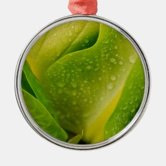 Flora Dominica 3 Silver-Colored Round Ornament