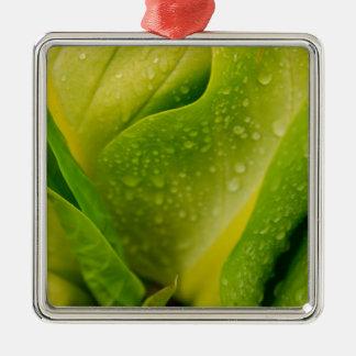 Flora Dominica 3 Silver-Colored Square Ornament