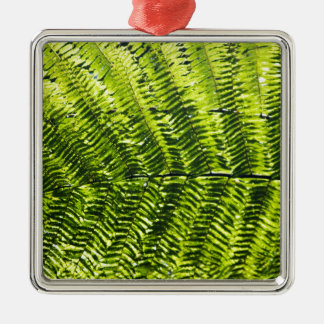 Flora Dominica 5 Silver-Colored Square Ornament
