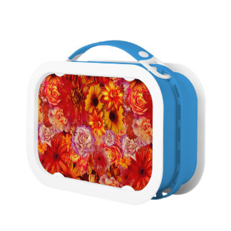 Floral Bright Rojo Bouquet Rich Red Hot Daisies Lunch Box