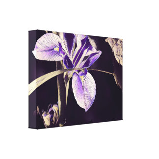 Floral Canvas Art; Stunning Purple Iris