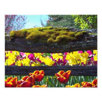 Floral Choral Photo Print