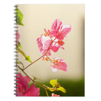 floral collection notebooks