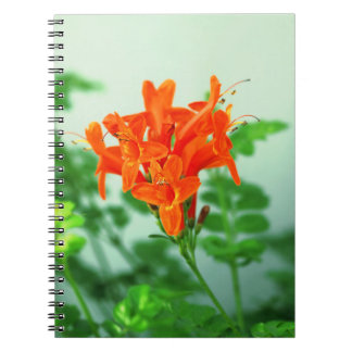 floral collection spiral note books