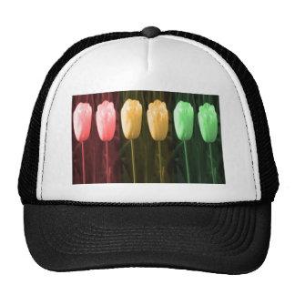 Floral Dance Patterns Hats