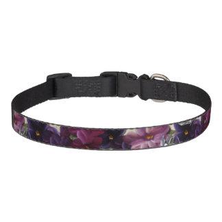 Floral decor pet collar