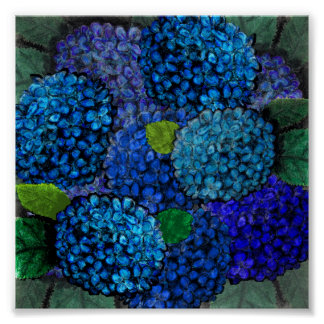 Floral Design, Blue Hydrangea Print