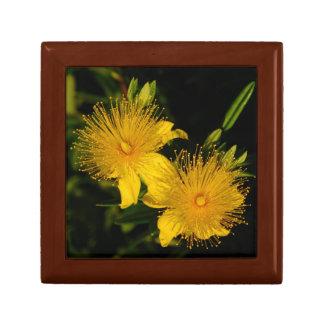 Floral Fireworks Gift Box