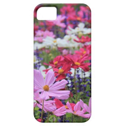 Floral, fleurs sauvages, roses, blanc, bleu, vert iPhone 5 case