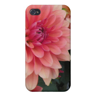 Floral iPhone 4/iPhone 4S Case Case For The iPhone 4