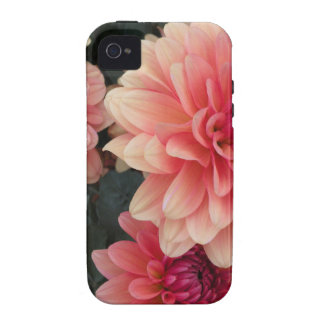 Floral iPhone 4 iPhone 4S Case-Mate Case iPhone 4 Cover