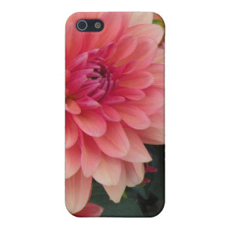 Floral iPhone 5/5S Cover