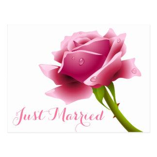Floral Just Married Pink Rose Flower Wedding Postcard