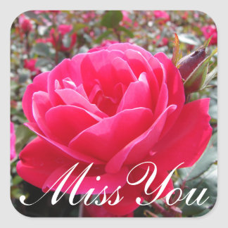 Floral Miss You Pink Rose Flower Square Sticker