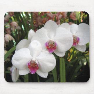 Floral Mousepad - 0676
