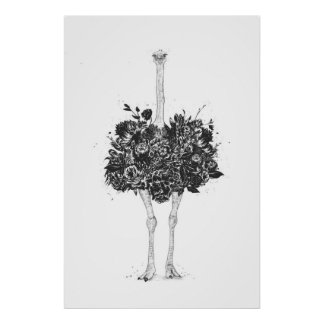 Floral ostrich poster