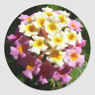Floral Photo Sticker