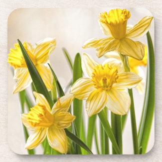 Floral Photography:  Yellow Spring Daffodils Coaster