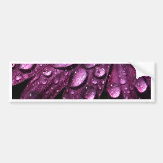 floral rain drops art design bumper sticker