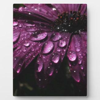 floral rain drops art design plaque