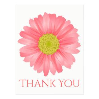 Floral Thank You Gerbera Daisy Pink Flower Postcard