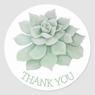 Floral Thank You Green Succulent Cactus Round Sticker