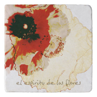 floral trivet with Spanish text