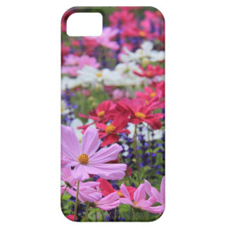 Floral, wildflowers, pinks, white, blue, green iPhone 5 covers