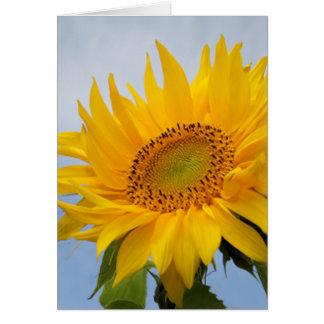 Floral Yellow Sunflower Flower Blank Notecard