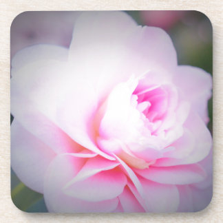 Florall Blush Coaster