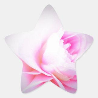 Florall Blush Star Sticker