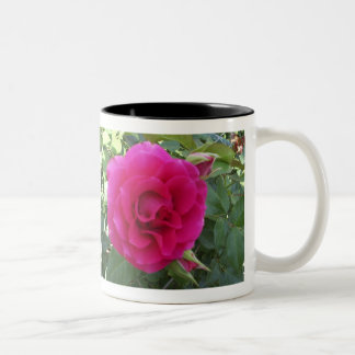 Floribunda Rose Mug