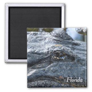 Florida Alligator Magnet