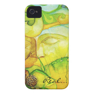 Florida Art iPhone 4 Case-Mate Case