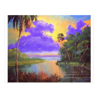 Florida Backwoods Colors Postcard