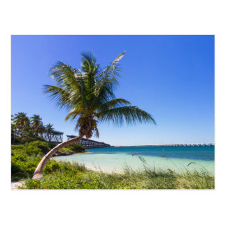 Florida - Bahia Honda postcard