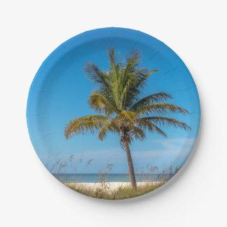 Florida beach palmtree plates