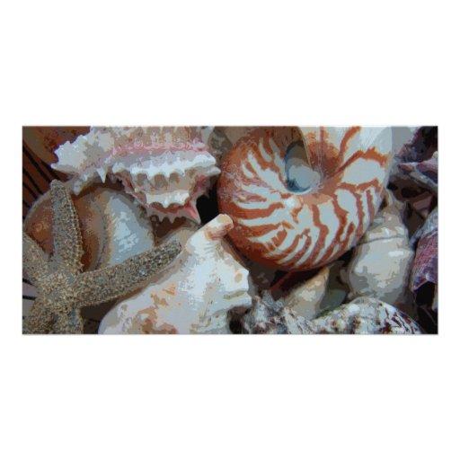 Florida Beach shells Photo Card