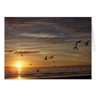 Florida Beach Sunset with Birds Card