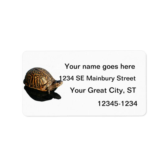 Florida Box turtle Photograph with Shadow Cutout Label