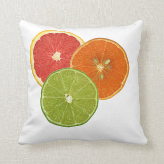 Florida Citrus Pillow