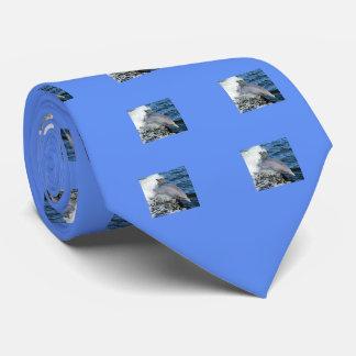 Florida Dolphin Tie