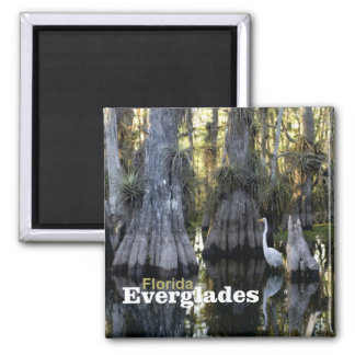Florida Everglades Photo Souvenir Fridge Magnet