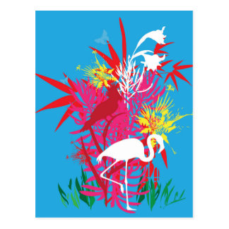 Florida Flamingos Postcard