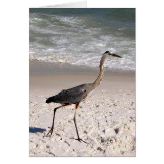 Florida Heron Card