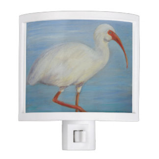Florida Ibis 2 Night Light