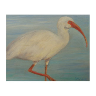 Florida Ibis 2 Wood Wall Art