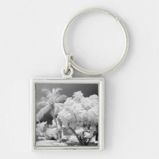 Florida Keys house and its palm trees, USA. 2 Silver-Colored Square Keychain