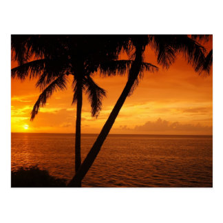 Florida Key's Sunset Postcard
